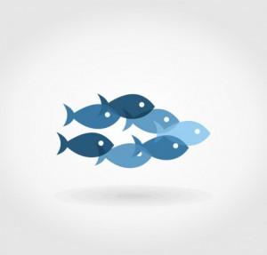 photodune-5723200-flight-of-fishes5-s-480x460